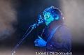 Paleo Festival 2013 : Nick Cave + -M- + Keny Arkana + Gael Faye + Fai Baba + Youssoupha + Retro Stefson + Dubioza Kolectiv + Nick Porsche en concert