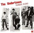 The Undertones (This is (not) Music) en concert