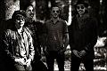 Araban + Mustang + The Kokomo's + The Croomers + The Barbed Wire Brothers + Ktipietok Orcestar  en concert