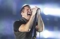 Nine Inch Nails (Festival Rock En Seine 2013) en concert