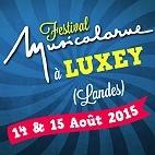 Le festival Musicalarue : concerts et billetterie
