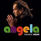 Tournée Yannick Noah