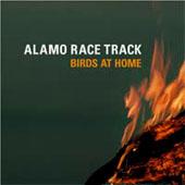 Alamo Race Track : Birds At Home