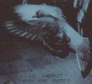 Vic Chesnutt : North Star Deserter