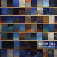 Tindersticks : The Something Rain