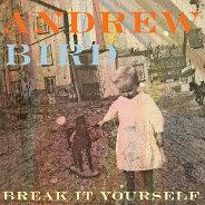 Andrew Bird : Break It Yourself