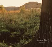Andrew Bird : Noble Beast