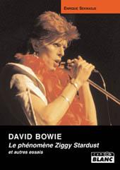 David Bowie /Enrique Seknadje : Le Phénomène Ziggy Stardust / Livre