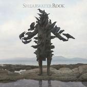 Shearwater : Rook