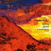 Tindersticks : Falling Down A Mountain