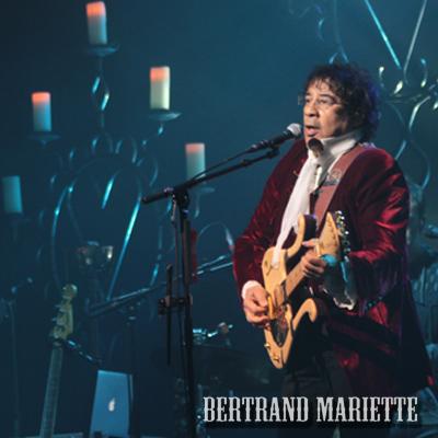 Laurent Voulzy en concert