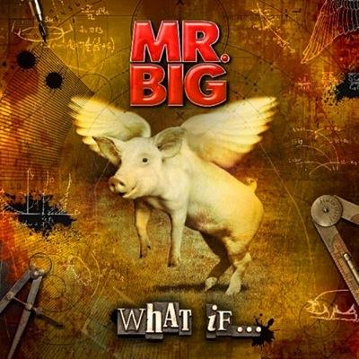 Mr Big  en concert