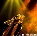 Interview de Sébastien Tellier en concert