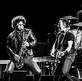 Bruce Springsteen & The E Street Band (The River Tour) en concert