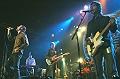 The National + Herman Düne + The Go! Team + Los Banditos + Ken Emerson & Terii Nui (Printemps de Bourges 2005) en concert