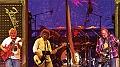 Neil Young & Crazy Horse en concert