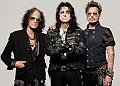 Hollywood Vampires (Alice Cooper, Joe Perry, Johnny Depp) en concert