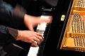 Bojan Z Piano Solo en concert