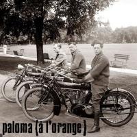 Paloma (à l'orange) en concert
