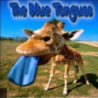 Blue Tongues en concert