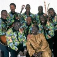 Orchestra Baobab en concert