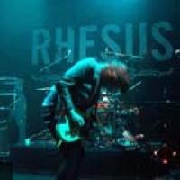 Rhésus en concert