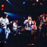 Torpedo Deluxe en concert