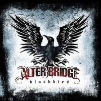 Alter Bridge en concert