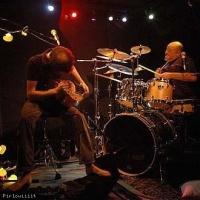 Antiquarks en concert