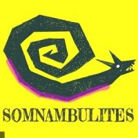 Les Somnambulites en concert