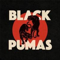 Black Pumas en concert