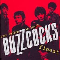 Buzzcocks en concert