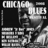 Chicago Blues Festival de Leognan