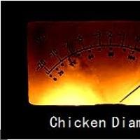 Chicken Diamond en concert