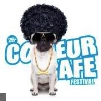 Couleur Cafe Festival