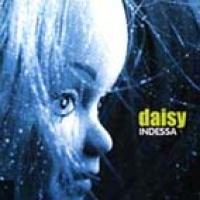 Daisybox en concert