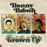 Danny Brown en concert