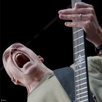 Devin Townsend en concert