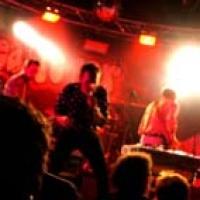 Dino Farfisa & the Fuzz en concert