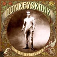 Donkey Skonk en concert