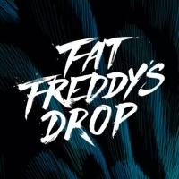 Fat Freddy's Drop en concert