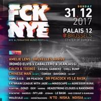 Fcknye Festival 2017
