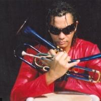 Franck Nicolas en concert