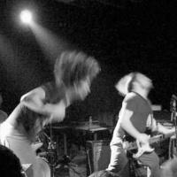 Hair Police en concert
