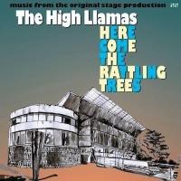 The High Llamas en concert