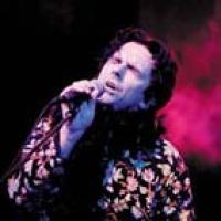 Steve Hogarth en concert