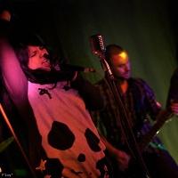 Jack, Dope & Noise en concert