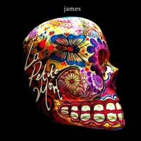 James en concert