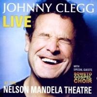 Johnny Clegg en concert