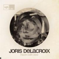 Joris Delacroix en concert